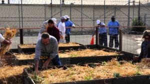 Prisoners are pictured gardening at a prison facility in Oakland, California.